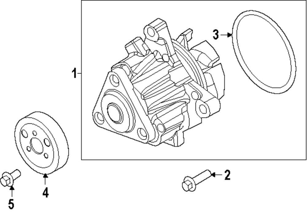 Genuine Ford Water Pump Screw For Ws